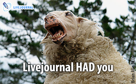 Livejournal had you