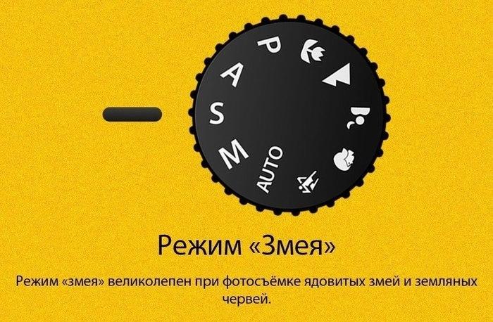 123717018614_2