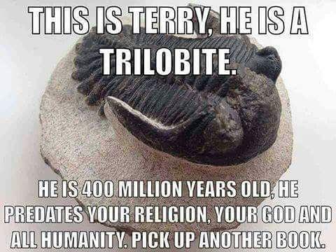 Это Терри, он трилобит