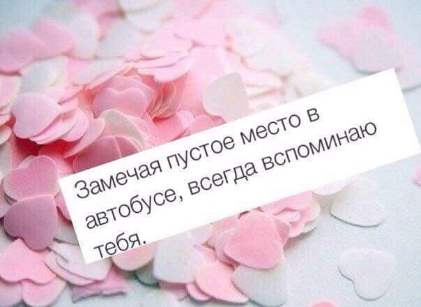 170865718133_1