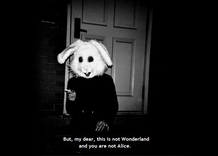 This is not wonderland