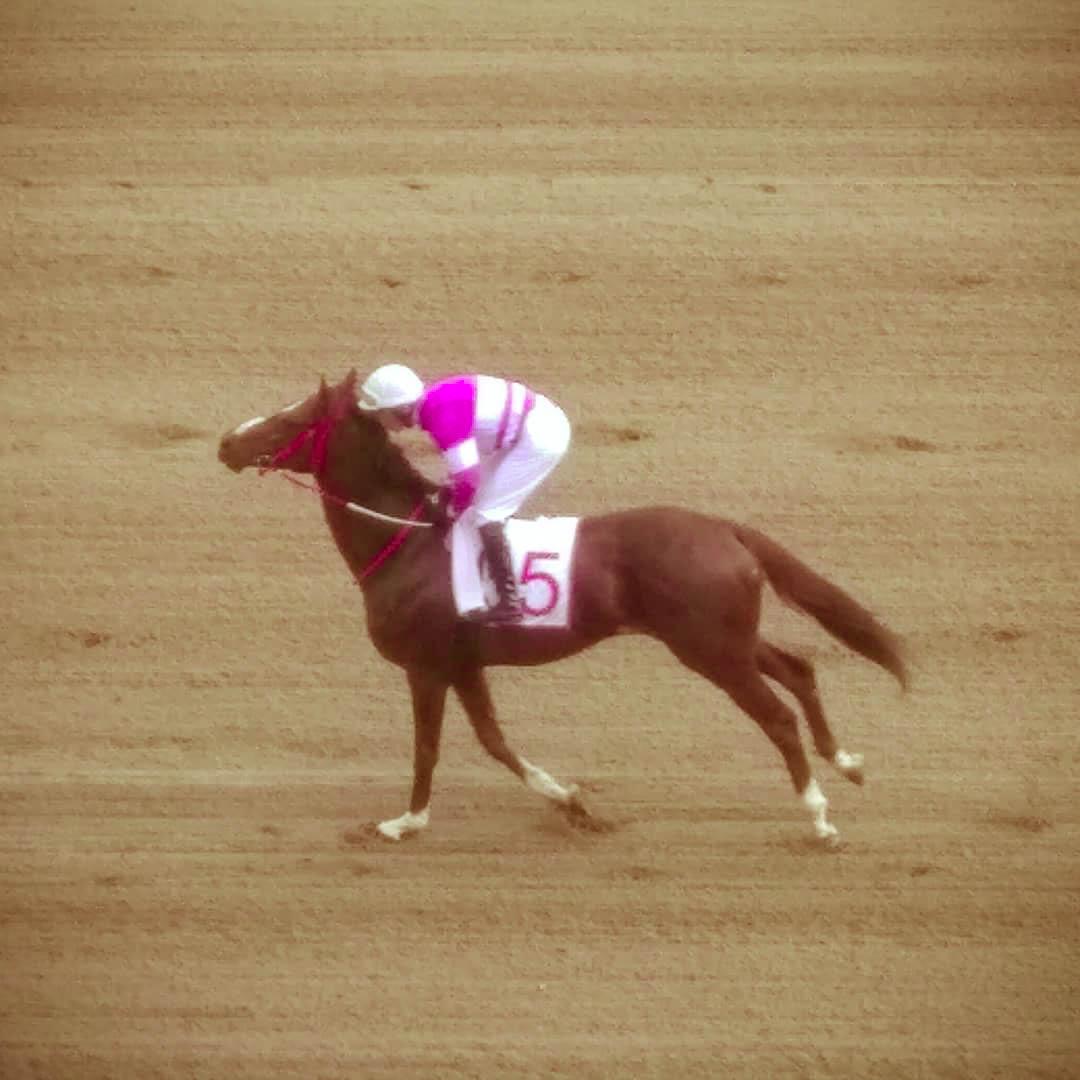 185 racetrack 1